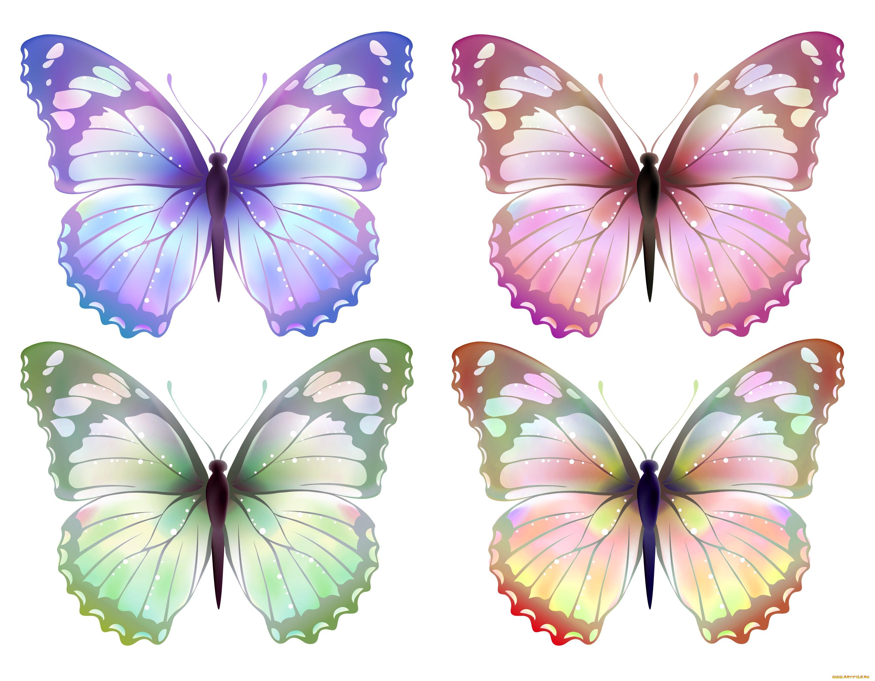 Лет, картинка бабочки для вырезания распечатать цветные