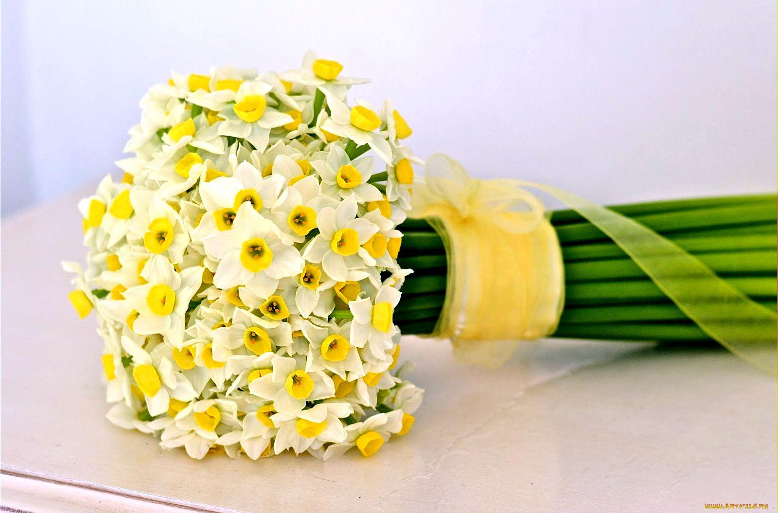 Нарциссы оформление в букете фото, доставка цветов тюмени