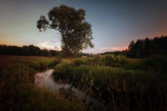обоя природа, реки, озера, поток, луг