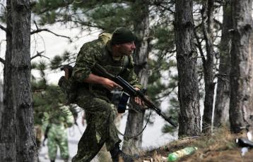 Картинка оружие армия спецназ спецназовец автомат лес