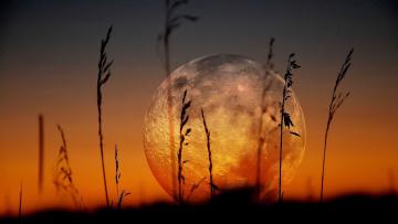 Картинка на+закате природа восходы закаты на закате трава луна