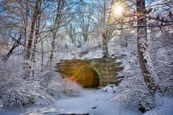 обоя природа, зима, снег, массачусетс, новая, англия