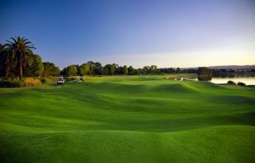 обоя спорт, гольф, деревья, трава, газон, пальмы, поле, зелень, озеро, пейзаж