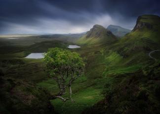 обоя природа, горы, камни, шотландия, гора, скалы, дерево, остров, скай
