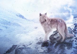 обоя рисованное, животные,  волки, горы, волк, снег, by, fiirewolf