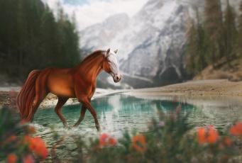 обоя рисованное, животные,  лошади, природа, горы, лошадь, озеро, by, fiirewolf