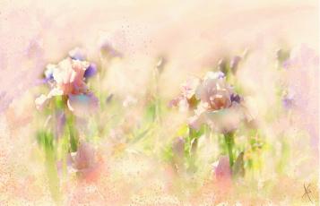 обоя рисованное, цветы, ирисы, рисованные, живопись, мазки, цифровая, пастельные, тона, рисунок, имитация, акварели, нарисованные, картина, нежно