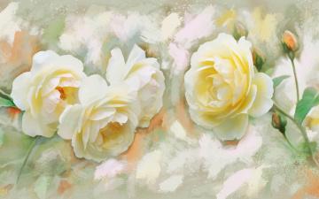 обоя рисованное, цветы, рисунок, цифровая, белые, розы, имитация, акварели, нарисованные, бутоны, картина, нежно, рисованные, живопись, мазки
