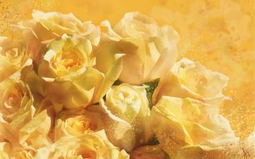 обоя рисованное, цветы, рисунок, цифровая, имитация, акварели, нарисованные, желтый, картина, нежно, фон, рисованные, живопись, розы, белые, мазки, лепестки