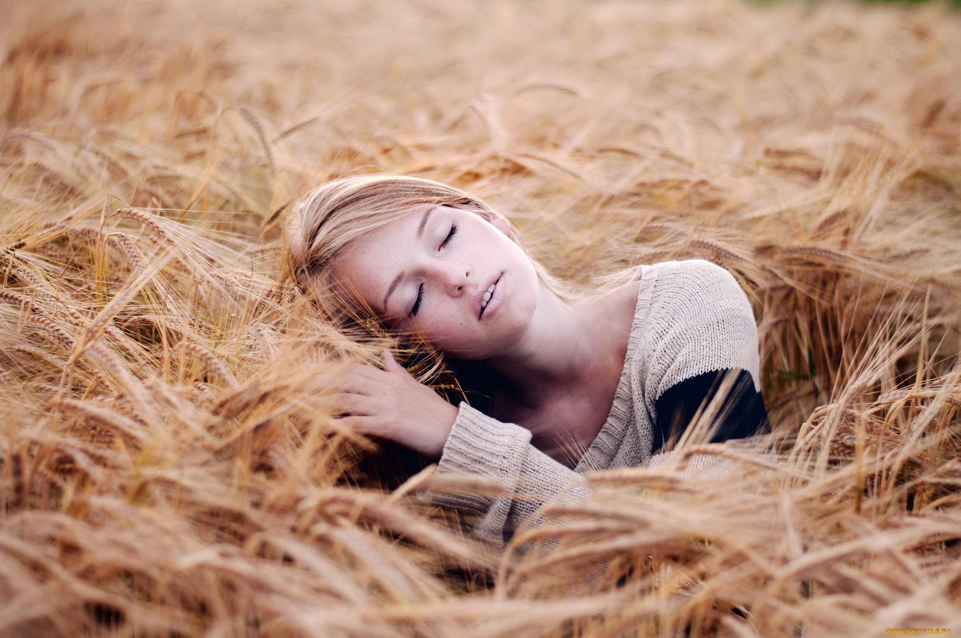 Девушка в поле с колосьями  № 1822144 бесплатно