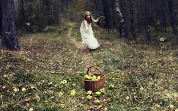 Картинка девушки -unsort+ блондинки блондинка лес трава тропа яблоки корзина