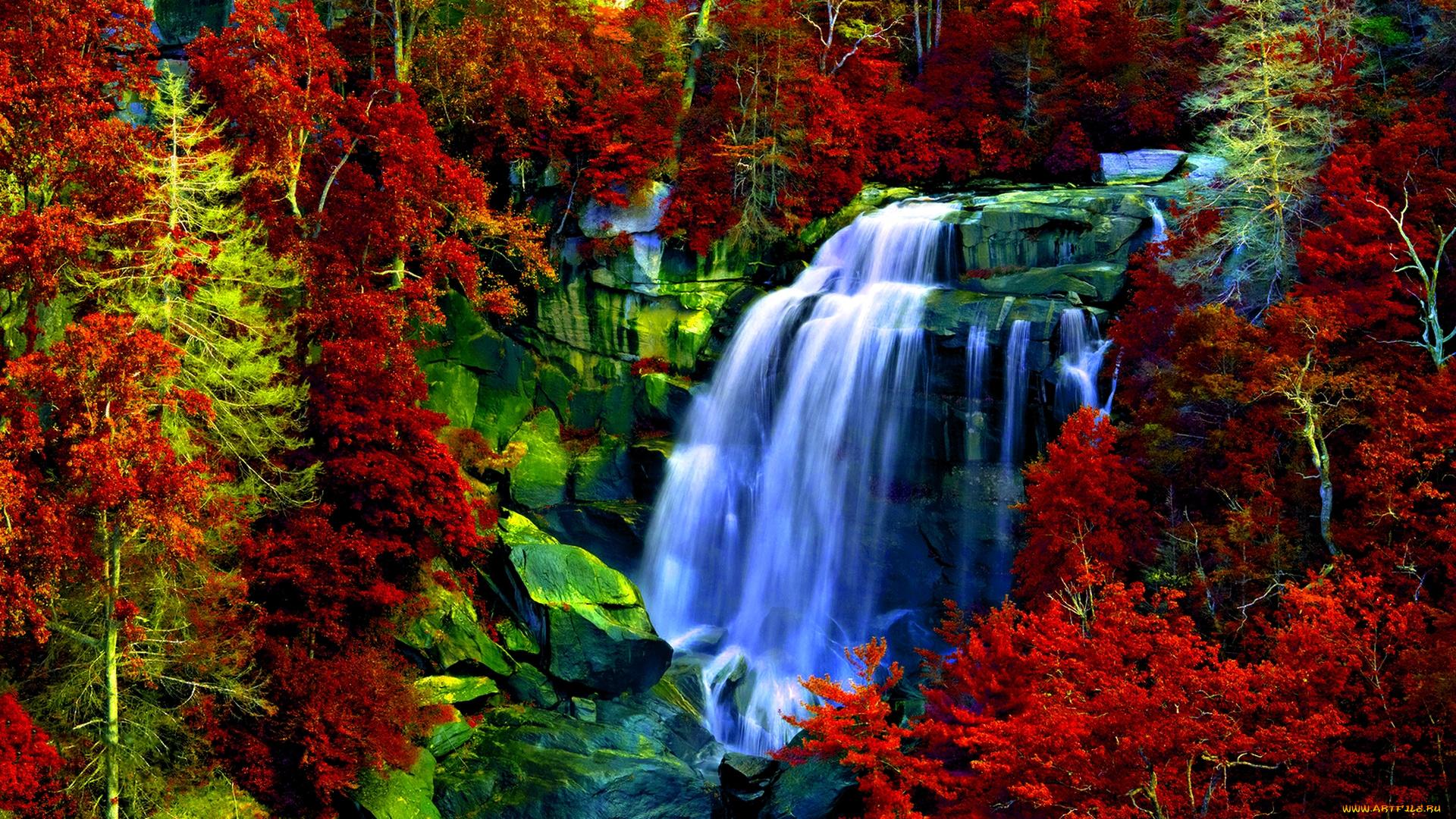 водопад среди деревьев загрузить