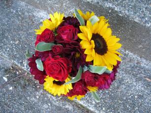 обоя цветы, букеты,  композиции, георгины, подсолнухи, розы