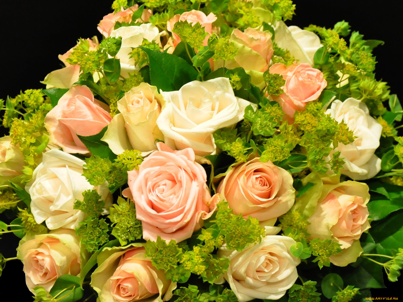 Розы для маргариты картинки