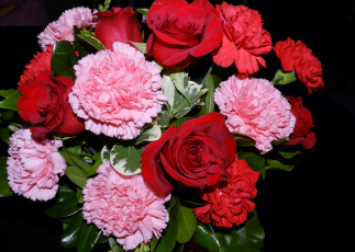 обоя цветы, букеты,  композиции, гвоздики, розы