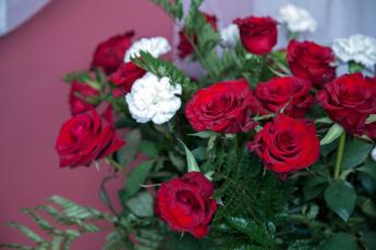 обоя цветы, букеты,  композиции, гвоздика, розы