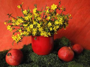 Картинка еда гранат цветы плоды