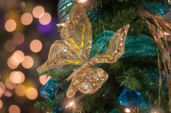 Картинка праздничные украшения бабочка