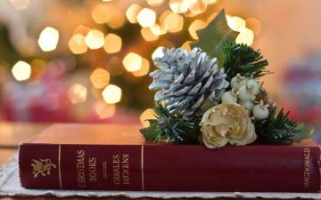 Картинка праздничные разное новый год шишка книга