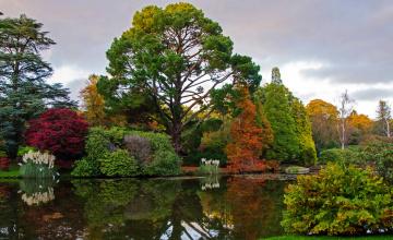Картинка sheffield+park+garden+england природа парк англия пруд деревья кусты