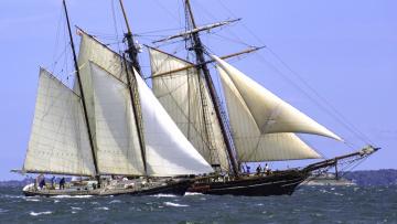 обоя корабли, парусники, паруса, мачты