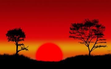 обоя векторная графика, природа , nature, деревья, фон, закат