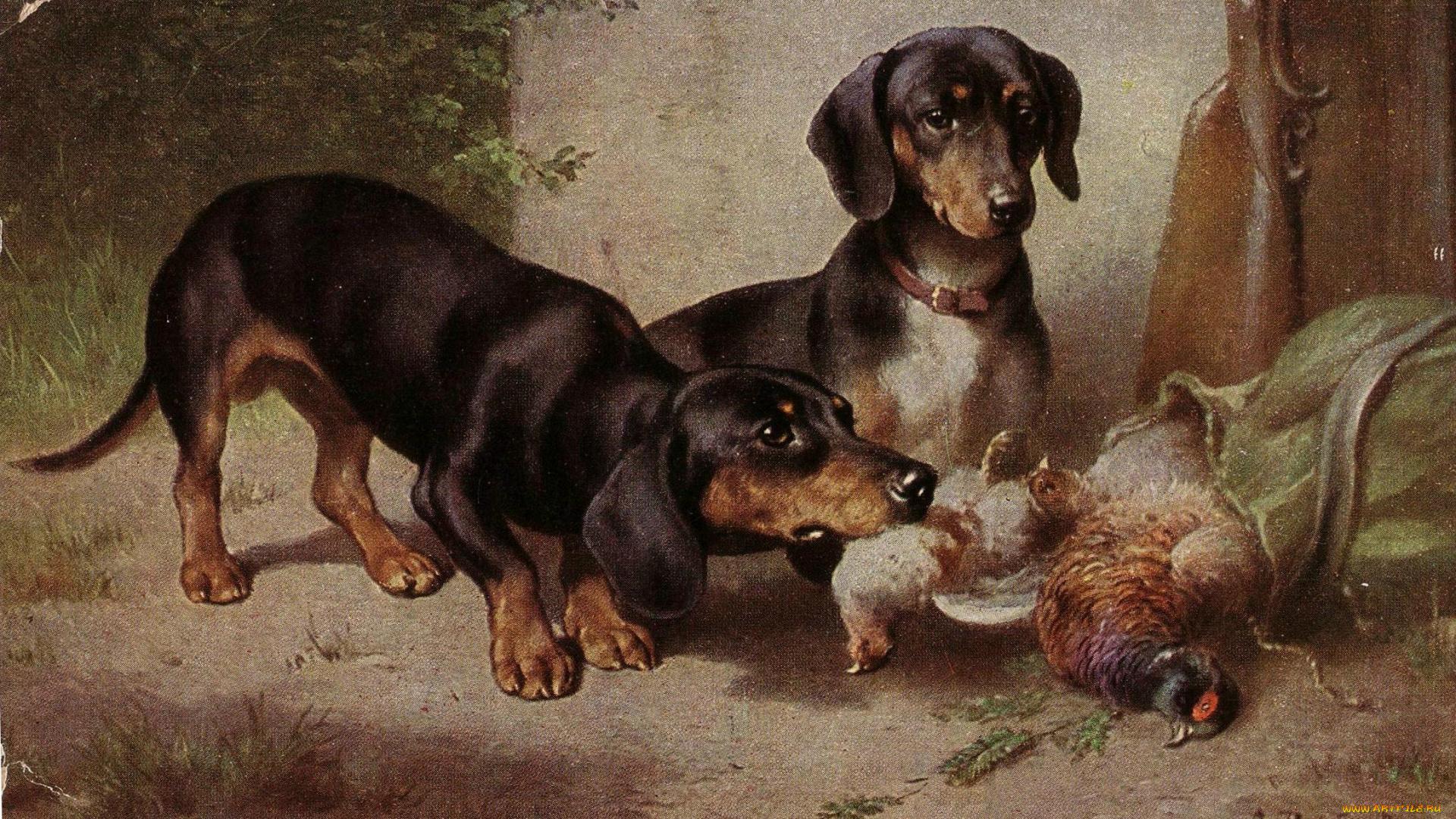 нашем старинные картинки собак жена ильи