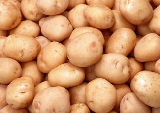 обоя еда, картофель, картошка