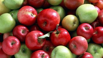 обоя еда, Яблоки, урожай