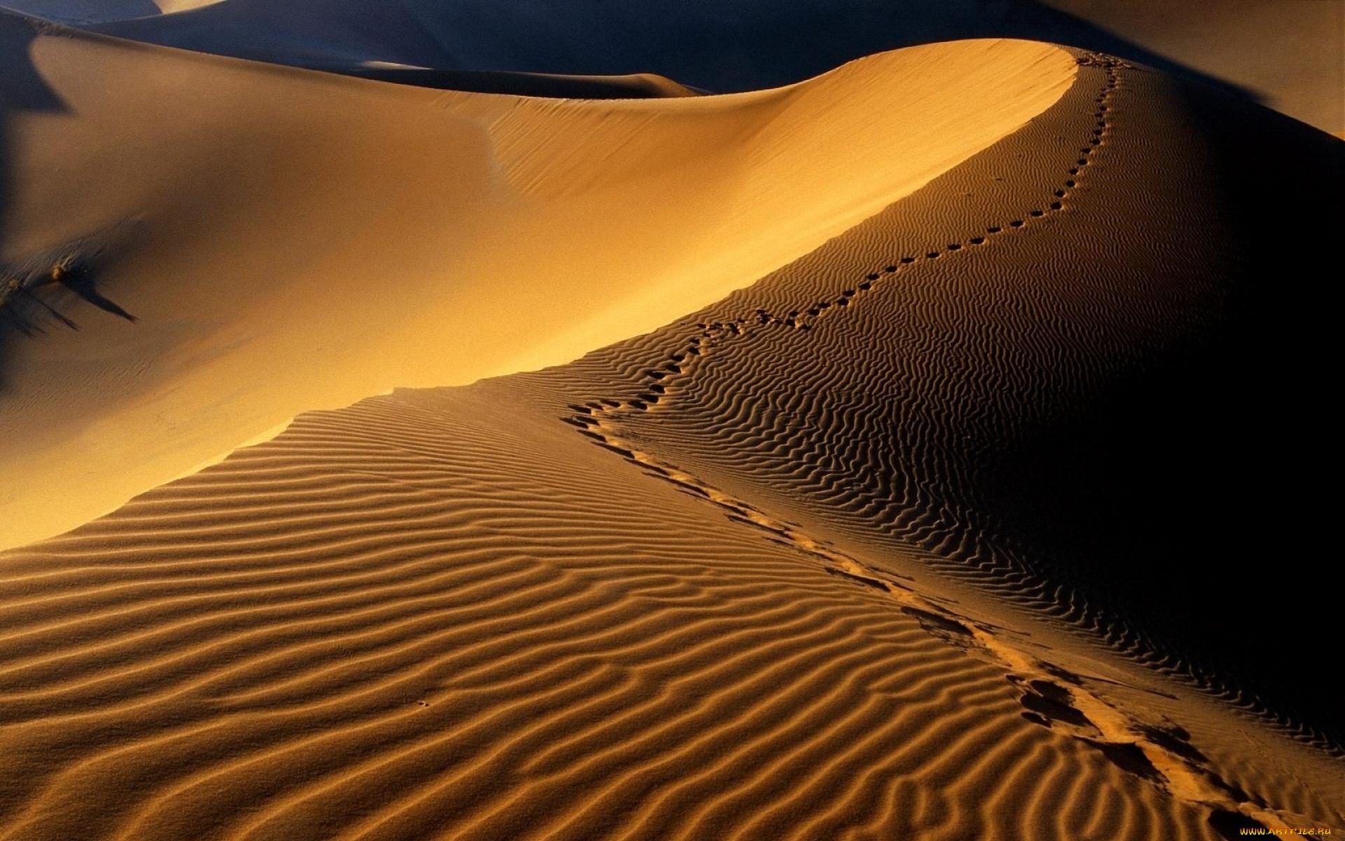 Картинки анимации пустыня