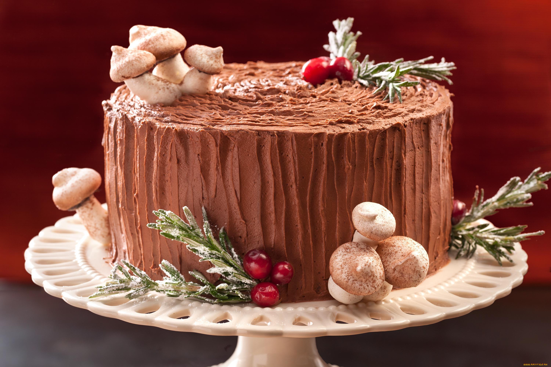 Рецепт приготовления торта «Трухлявый пень» в домашних условиях (с фото) 73
