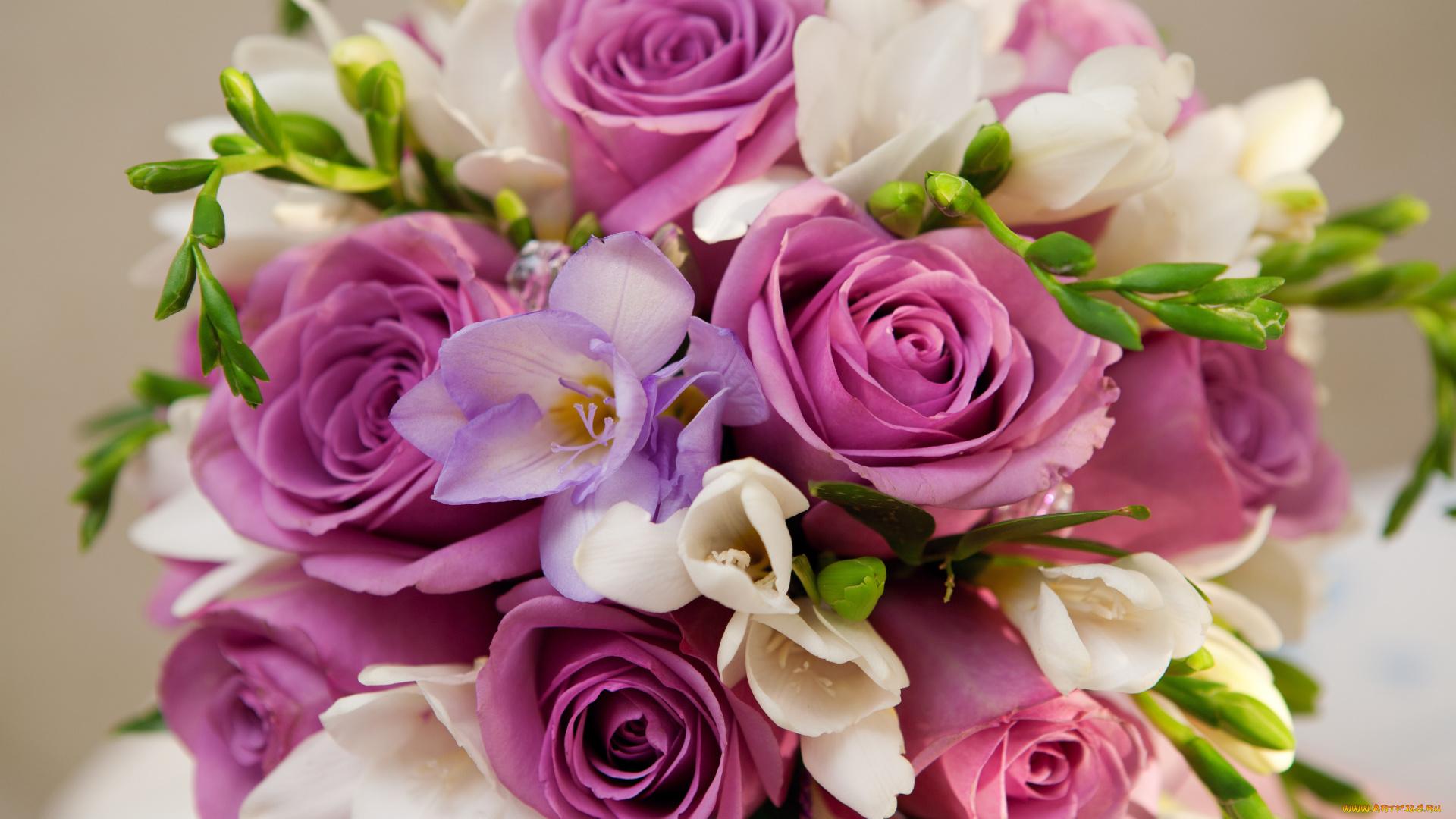 Открытки очень красивых цветов, надписью суперсемейка