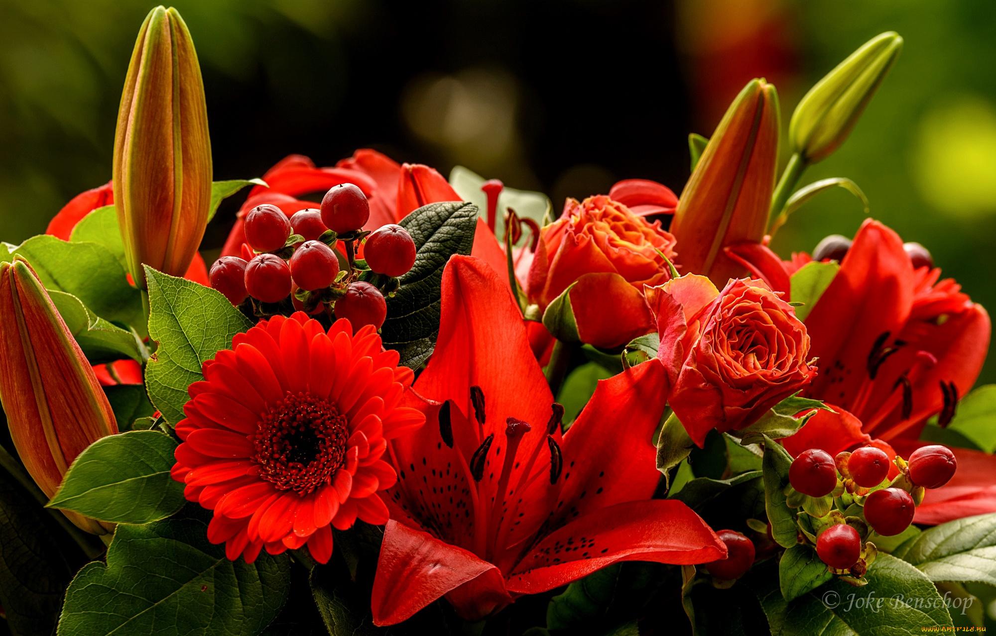 Поиск красивые фото цветы