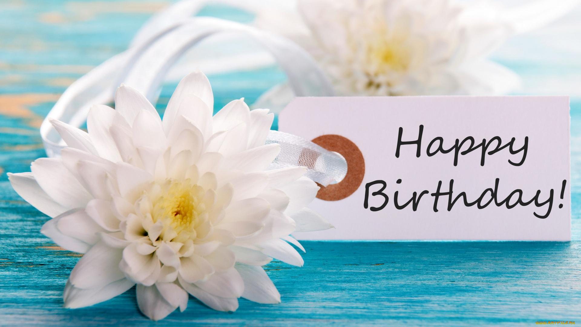 больше открытка с днем рождения море пляж цветы ондатру, промысел ондатры
