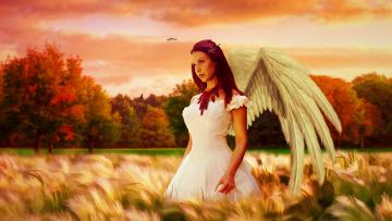 обоя фэнтези, фотоарт, крылья, девушка, платье, фон, поле