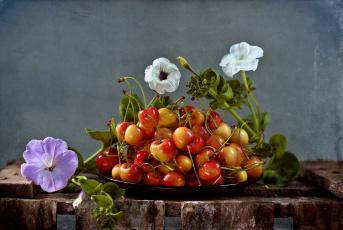 Картинка еда вишня +черешня черешня петуния блюдо