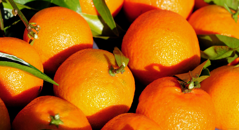 Апельсин Orange  № 2933093 без смс