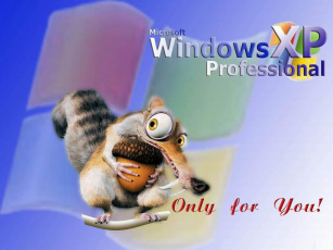 обоя belka, xp, компьютеры, windows
