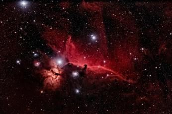 обоя космос, галактики, туманности, конская, голова, звезды