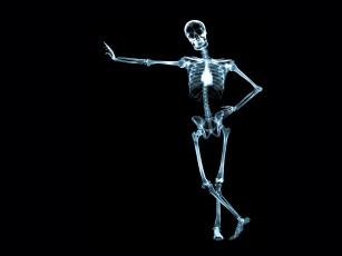 обоя рентген, 14, разное, кости