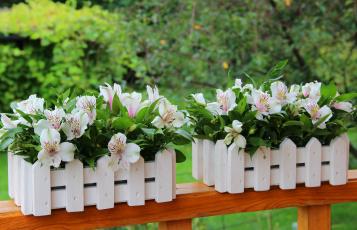 обоя цветы, альстромерия, красота, букет, декорация, лето