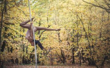 обоя спорт, гимнастика, тело