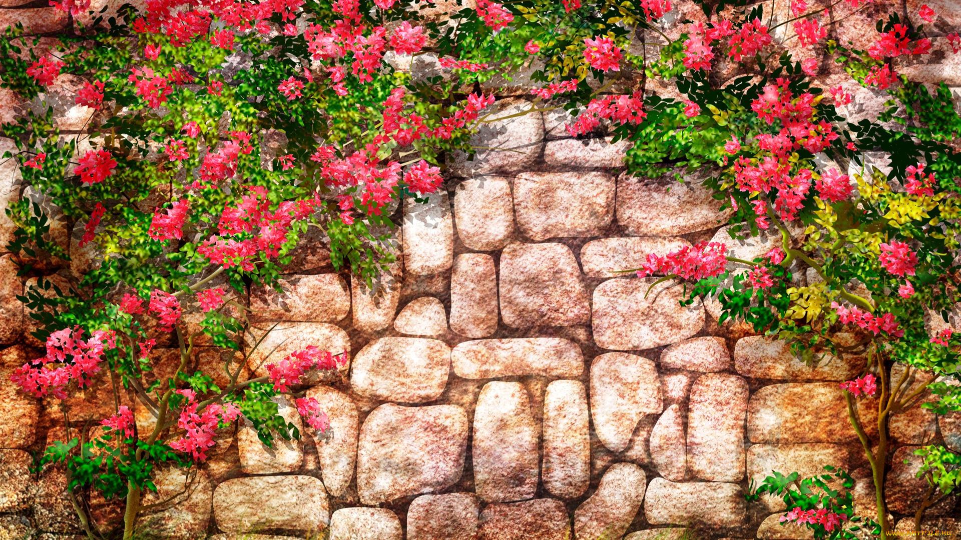 Стена в розах картинки
