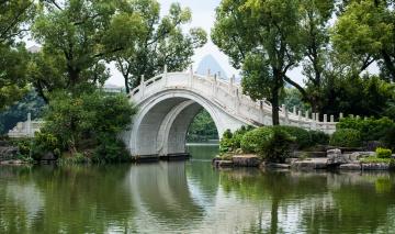 Картинка природа парк растительность мост река