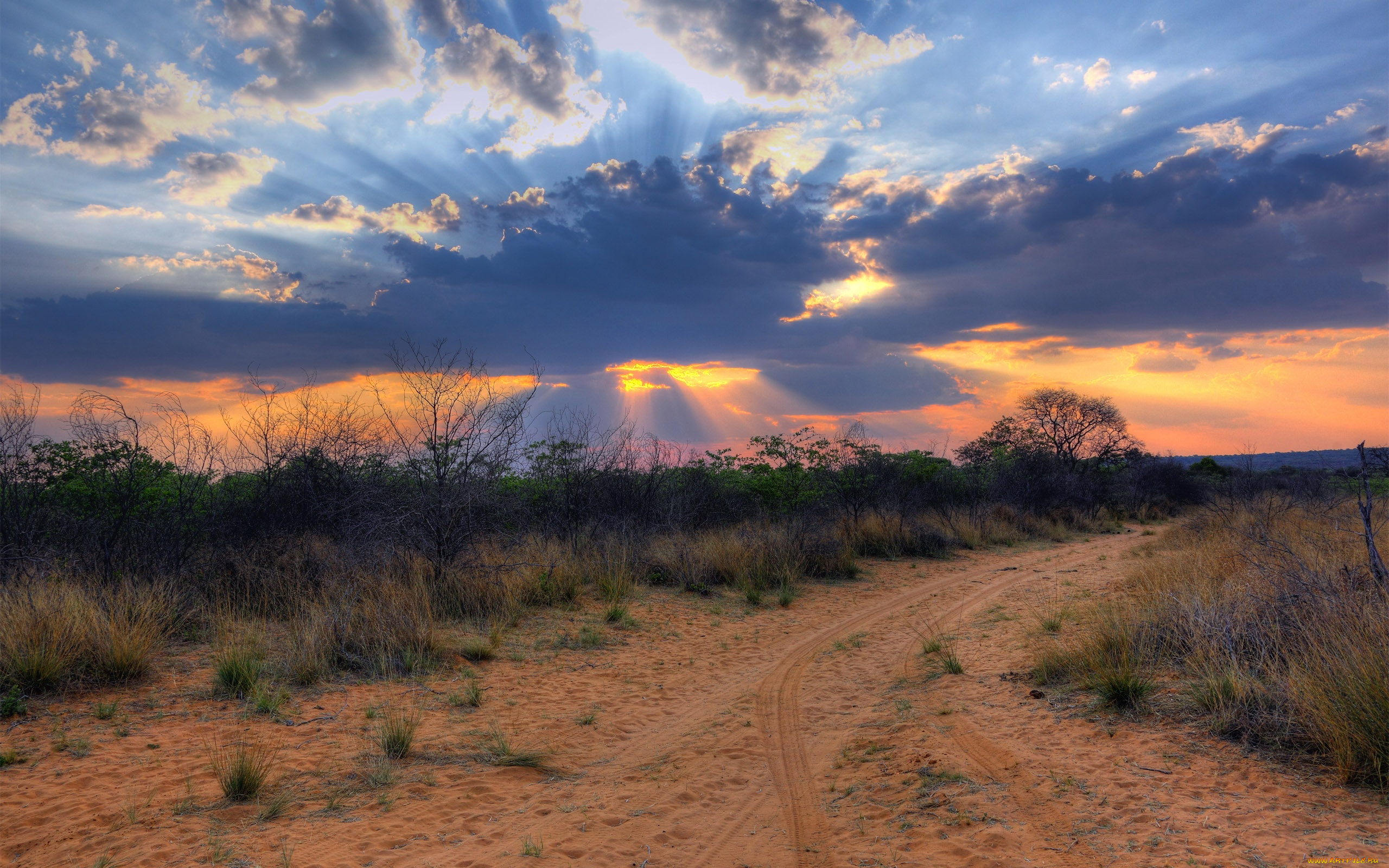 природа Намибия Африка пейзаж река скачать