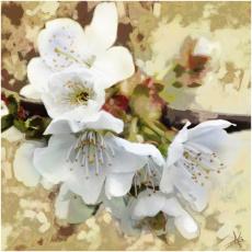 Картинка рисованные цветы дерево ветка