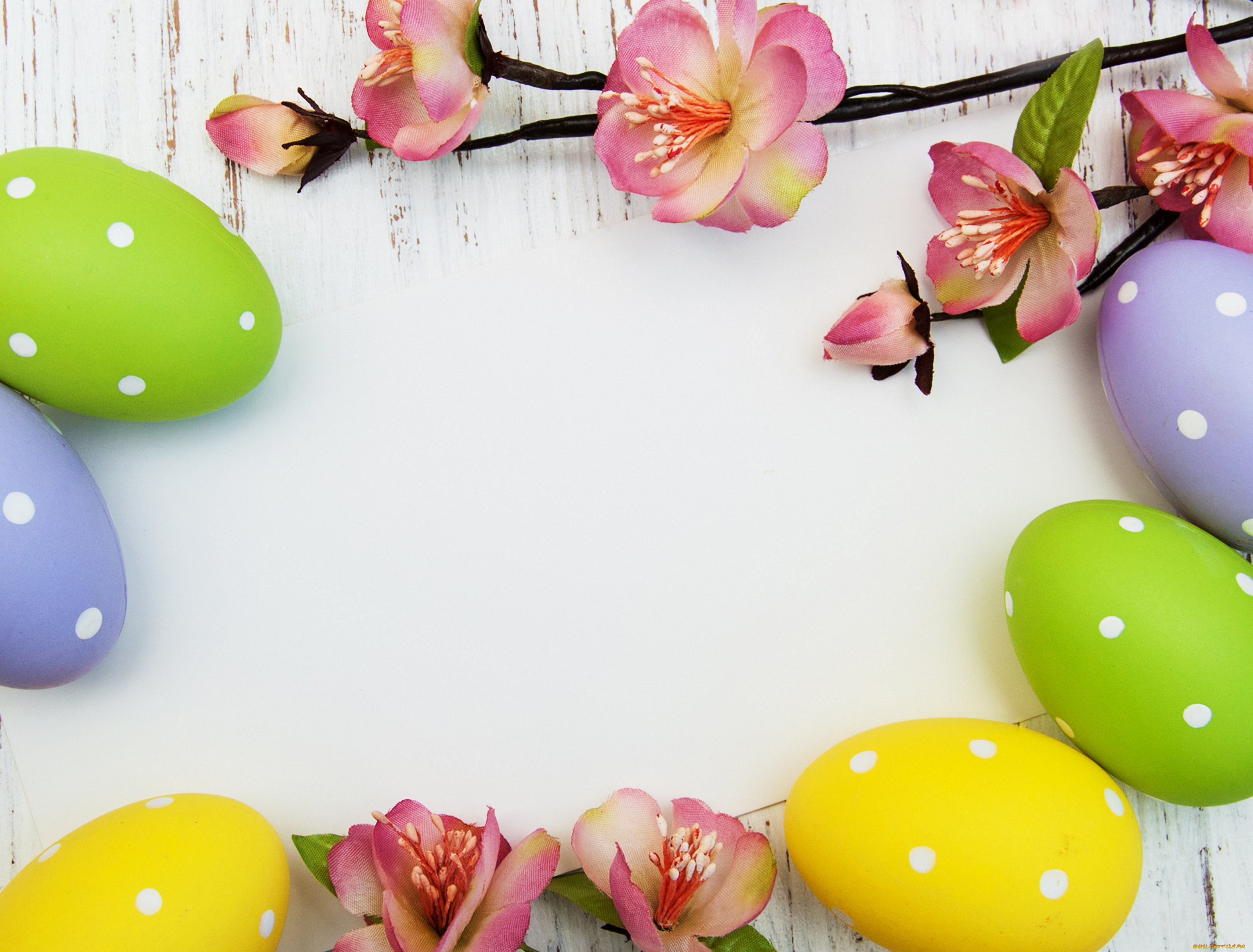 frohe ostern! - HD1600×1200