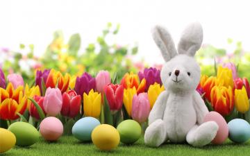 Картинка праздничные пасха тюльпаны кролик яйца bunny tulips flowers spring eggs easter
