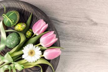 обоя праздничные, пасха, тюльпаны, писанки, бант