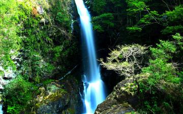 обоя природа, водопады, дорога, водопад, камни, скала, ворота, лес